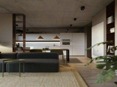 十万元装60平米极简公寓 